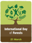 International day of Forest 21 March